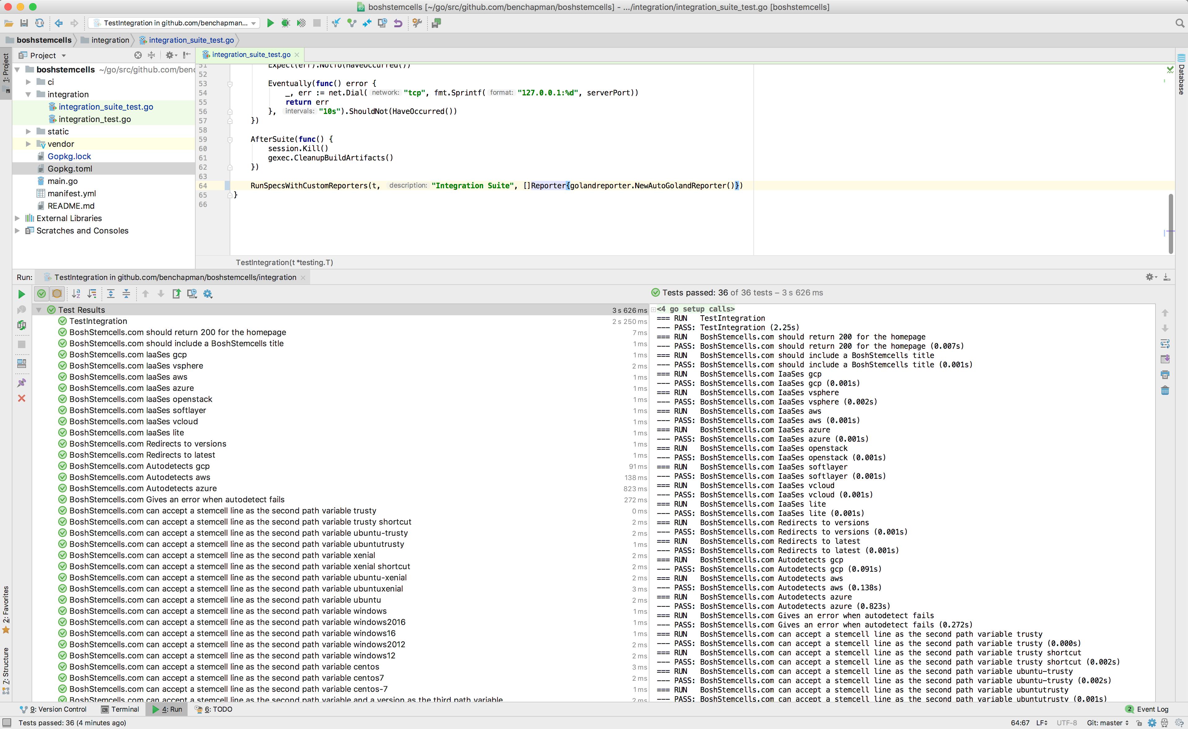 "Ginkgo output in Goland's ""Run"" window"