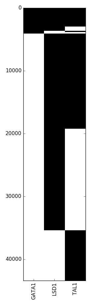 binary_heatmap.png