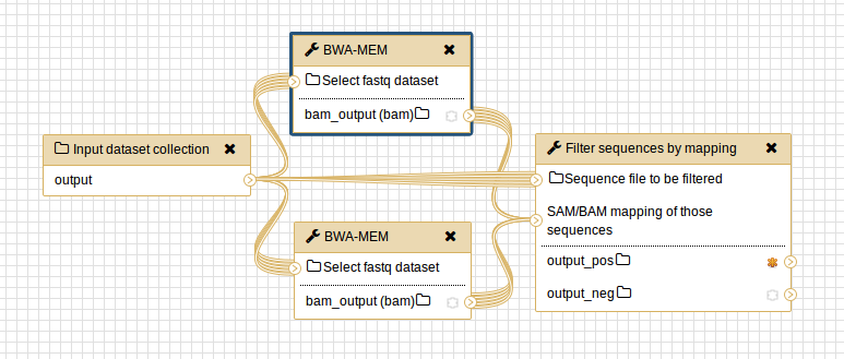 example_collection_workflow.png