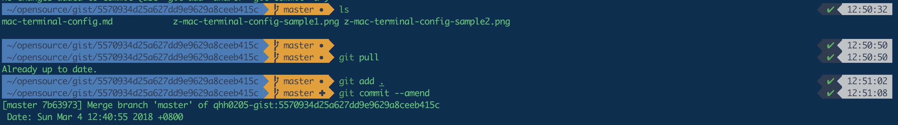 z-mac-terminal-config-sample2