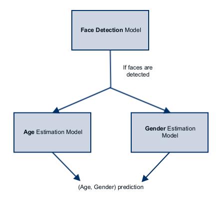 age_gender_estimation.png