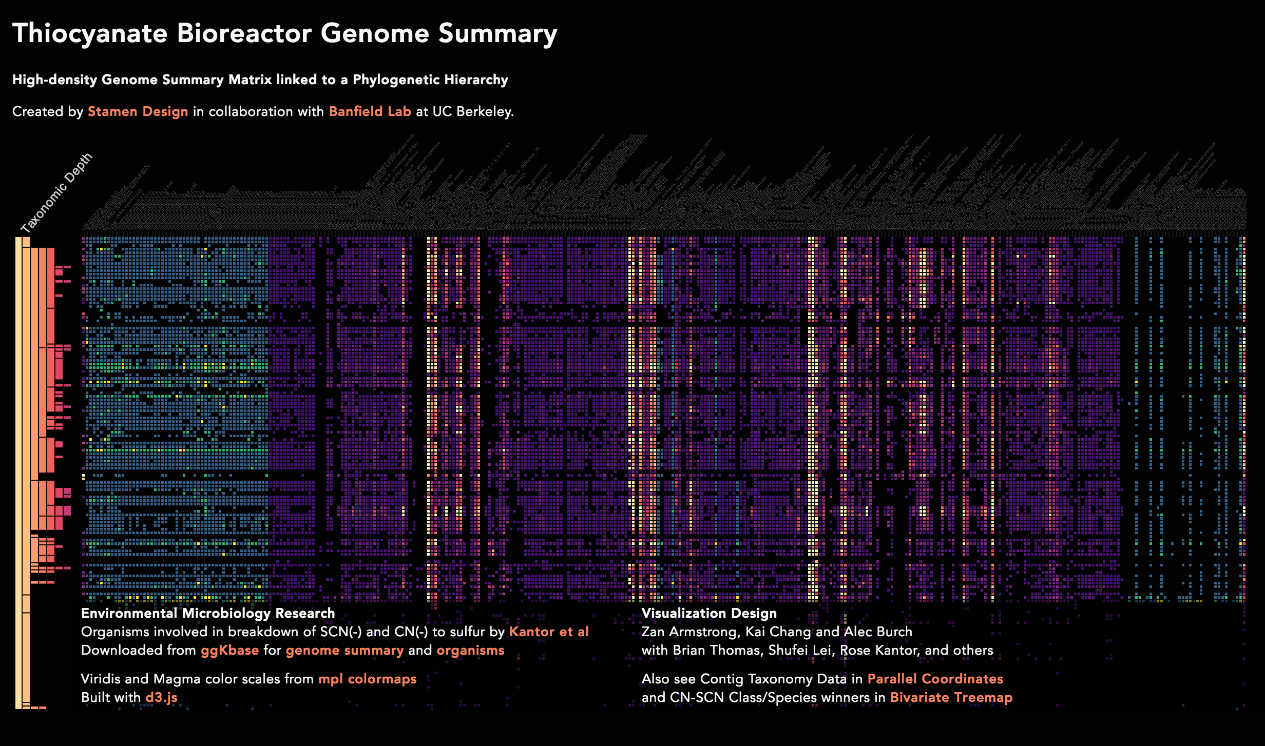 genome-summary.png
