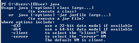 type-java-output.png